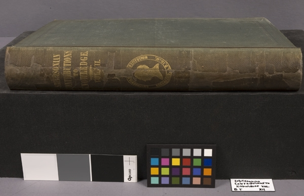 The book restored via  a new spine, repaired paper, and pastel coloring, Courtesy Michal Long.